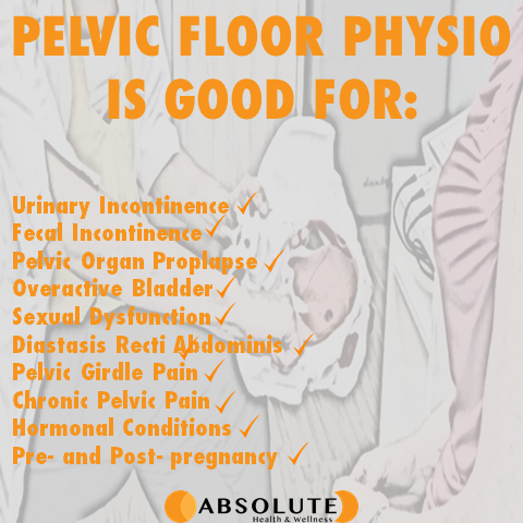 pelvic floor physiotherapy is good for urinary incontinence, fecal incontinence, pelvic organ prolapse, overactive bladder, sexual dysfunction, diastasis recti, pelvic girdle pain, chronic pelvic pain, hormonal conditions, and pre and post pregnancy
