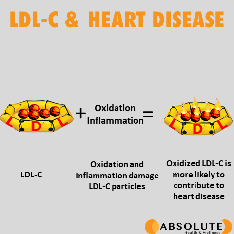 How LDL-C relates to heart disease is that LDL-C gets oxidized and there's inflammatory damage which contributes to heart disease