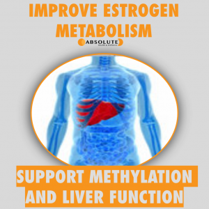a model of a liver showing that methylation and liver detox can improve estrogen metabolism