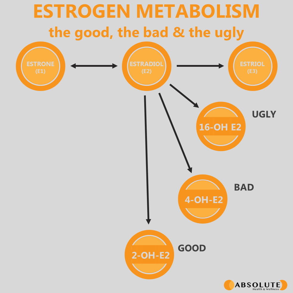 diagram explaining estrogen hormone metabolism showing the different metabolites of estradiol, including the good and bad ones