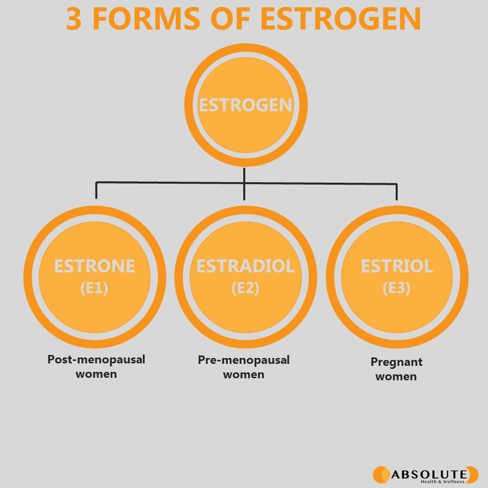 schematic diagram showing the 3 forms of the hormone estrogen: estrone, estradiol, estriol
