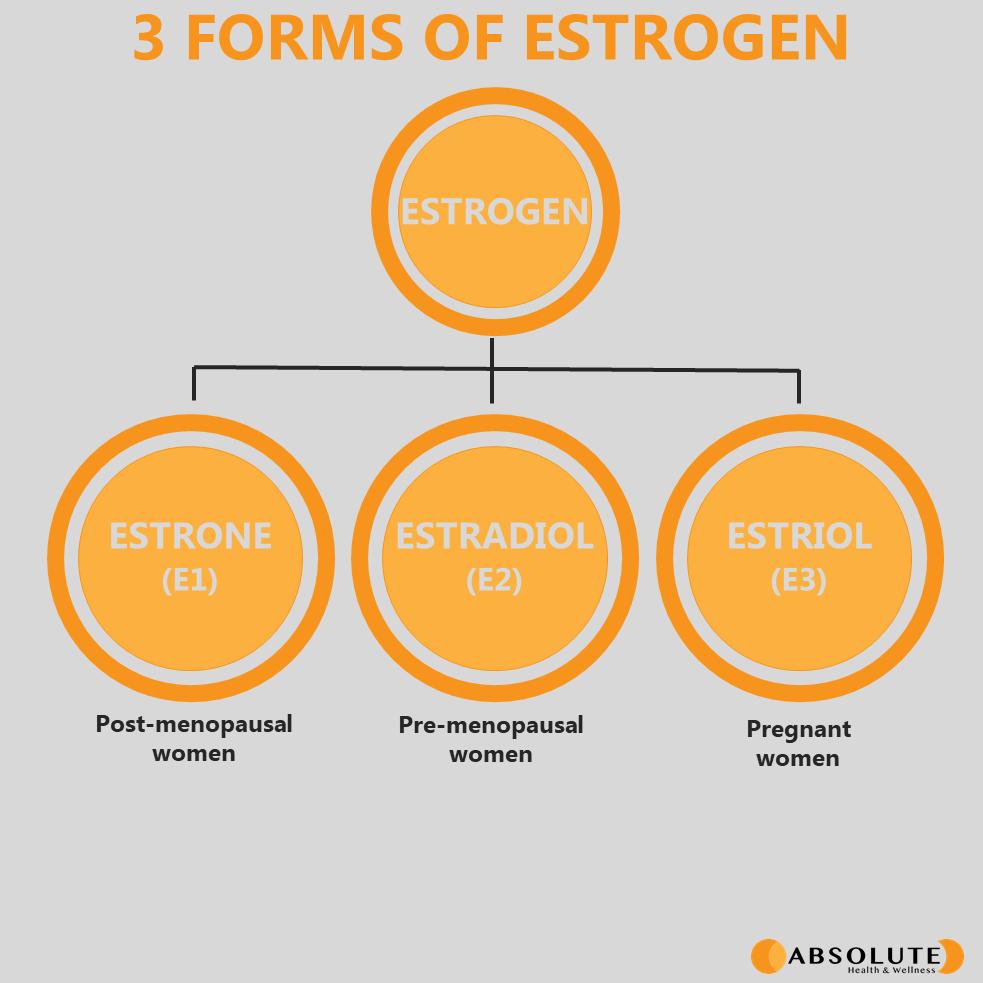 schematic diagram showing the 3 forms of the hormone estrogen: estrone, estradiol, estriol