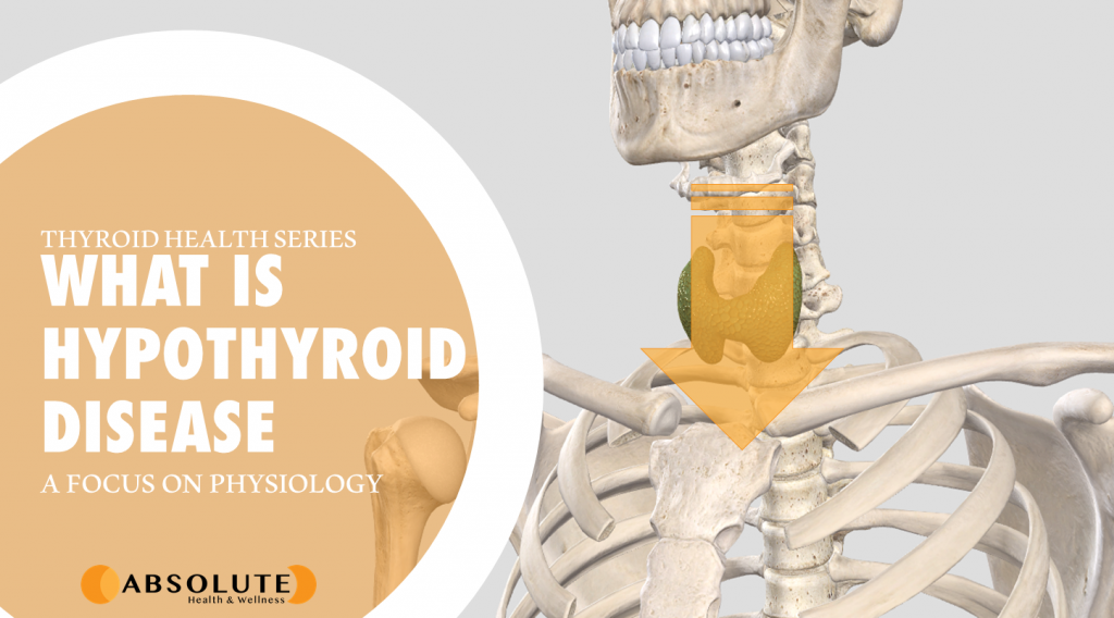 thyroid gland with an arrow over top and text bubble saying what is hypothyroid disease?